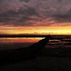 Cronulla Panorama by Alex Woolfenden