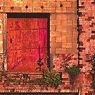 Wall #8 by Steven Godfrey