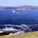 Peaceful Bay by Daidalos