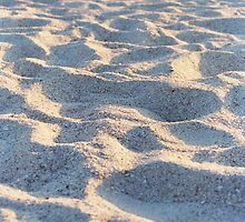 Sandy by Janissary
