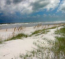 Sand Dunes and Sea Oats.2 by Tony Weatherman