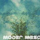 Moder Mesa by Andreas Bengter