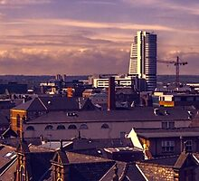 Leeds Skyline at Dusk  by Glen Allen