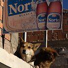 Norte by theblackazar