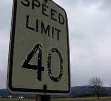 40 mph by Nicole Remolde