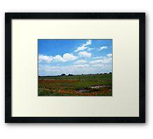 Orange Field Of Flowers Framed Print