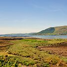 Carlingford lough. by Finbarr Reilly