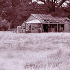 Old settler house by Phil  Crean