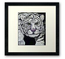 Tabitha-Wild Cubs Series #2 Framed Print