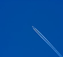 Up, Up  and Away... Destination Unknown by Buckwhite