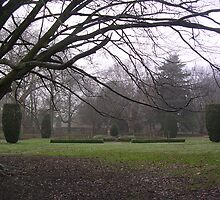 Bute Park, Cardiff by 'ö-Dzin Tridral