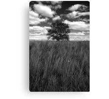 Grass tree and clouds Canvas Print