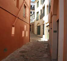 Spanish Alleyway by Andrew Whiting