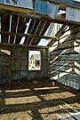 View from the Barn by Appel