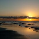 Sunrise on Cape Tribulation by Donna Rondeau