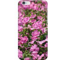 Summer Joy III iPhone Case/Skin