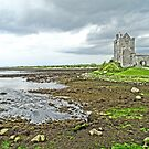 Dunguaire Castle by DES PALMER