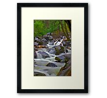 Bridal Veil Creek Framed Print