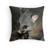 Caught In The Spotlight Throw Pillow