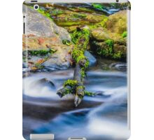 Rushing Stillness iPad Case/Skin