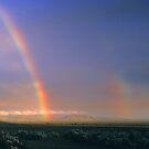 Flinders Ranges, South Australia. by Ern Mainka
