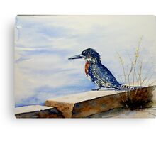 Giant Kingfisher Canvas Print