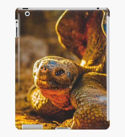 Golden Ray iPad Case/Skin