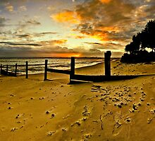 """Bribie island by Phineous """"Flash""""   Cassidy"""
