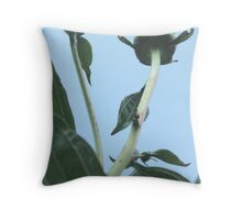 Great View, Come On Up Throw Pillow