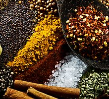 Spices by Ryan Carter
