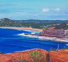 Sydney's Northern Beaches, NSW, Australia by Carole Elliott