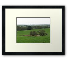 Touch Of Green Framed Print