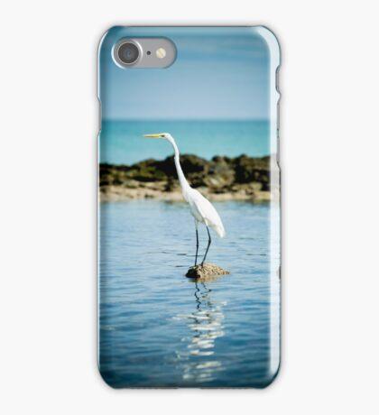 Galapagos Egret iPhone Case/Skin