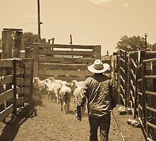 Moving Sheep by Albert Crawford