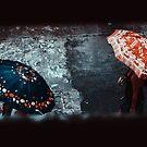 Umbrellas by ghastly