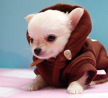 Obi Wan Kenobi by NaturesOptimist