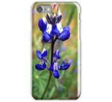 Dwarf Lupine iPhone Case/Skin