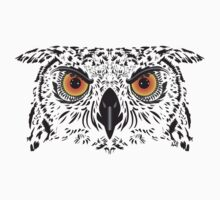 Owl by aligee