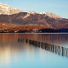 Springtime gold on Annecy lake by Patrick Morand