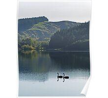 Lake Tutira Reflections Poster