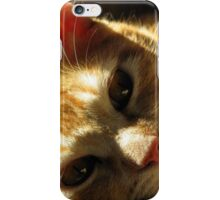 Beauty Overload iPhone Case/Skin