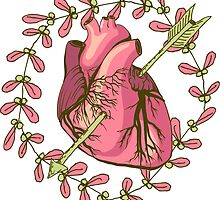 heart anatomical by OlgaBerlet
