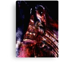 CEASER I Canvas Print