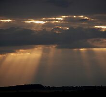 Evening Rays by Barry Goble