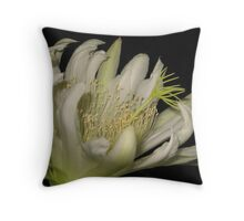 Night Blooming Cereus Closeup Throw Pillow