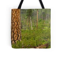 Pine Tree in Spring. Tote Bag