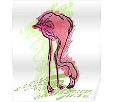 Painted flamingo bird Poster