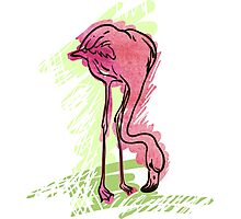 Painted flamingo bird Photographic Print