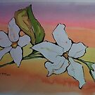 White flowers in a beautiful background by Santie Amery