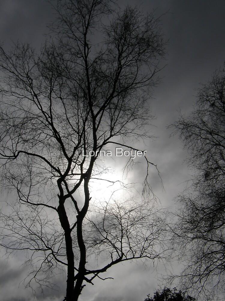 Cloudy Skies by Lorna Boyer